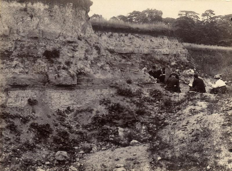 At one time, as seen here, Bugle Pit, Hartwell, was the best exposure of Purbeck Formation in the county. It is now severely degraded