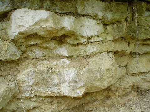 Coombs Quarry - the Bathonian, 