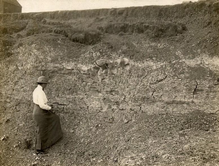Mr Bliss's Brick Pit, Stewkley, flattened to make way for a World War 2 airfield, exposed Kimmeridge Clay