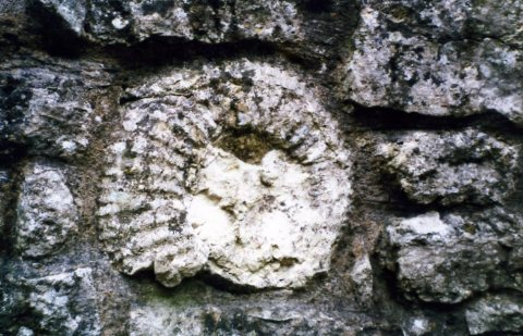 Titanites built into a Kimble wall