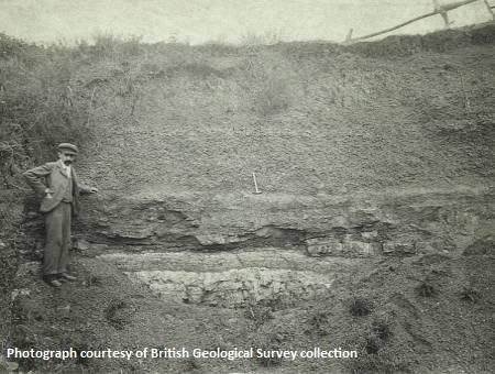 Windmill Quarry, Long Crendon - 1899. The pale beds at the bottom of the face are Purbeck Fm. Overlain by clays and ironstone lenses, assigned to the Whitchurch Sand Fm. The hammer marks the Junction Beds and the base of the Gault.